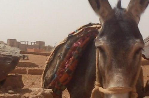 Article : Attention travaux : lieux mouvants, châteaux de sable et puis quoi encore ?