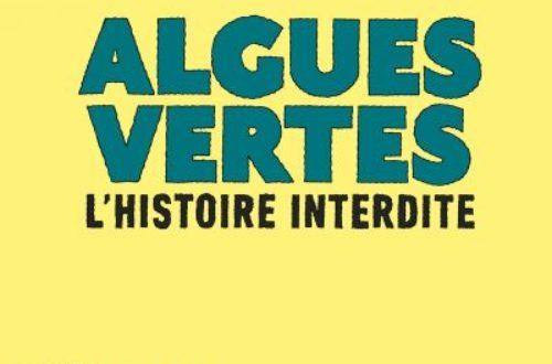 Article : Drôle année de la BD : les bretons mobilisés
